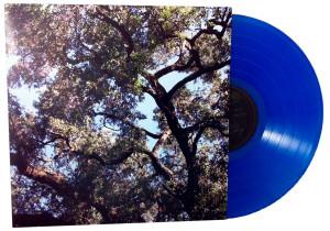 manson_trees_blue